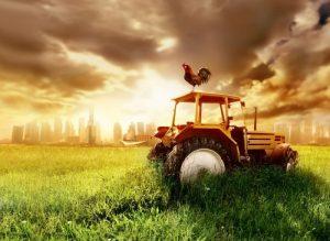 เครื่องจักรกลการเกษตรโดนน้ำท่วม